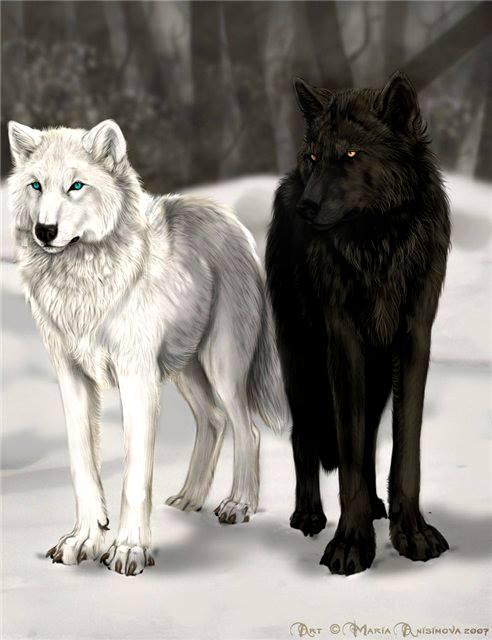 Los Dos Lobos (The Two Wolves)