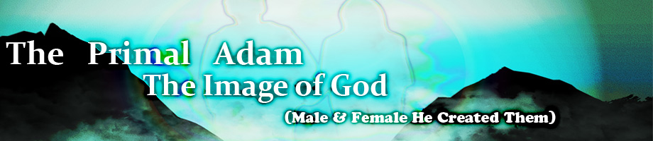 The Image of God / Primal Adam