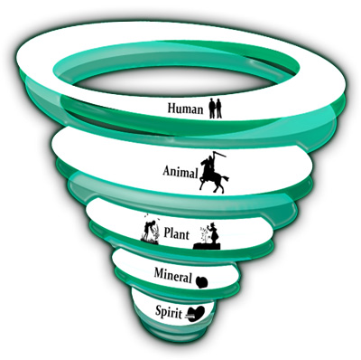 Age Cycles: Spirit, Mineral, Plant, Animal, Human
